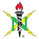 National Society for Back Engineers Logo
